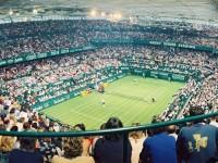 tennis-erba