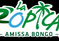 Tropicale_Amissa_Bongo